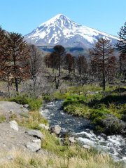 Lanin_Nationalpark_Argentinien.jpg