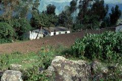 Landleben_La_Esperanza_Ecuador.jpg